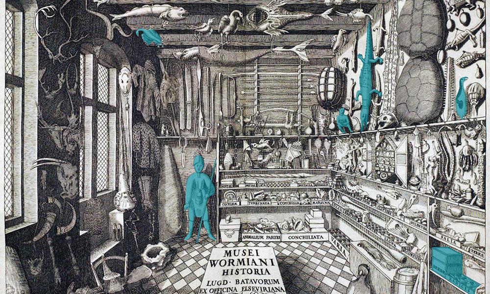 Wunderkammer su Nazione Indiana