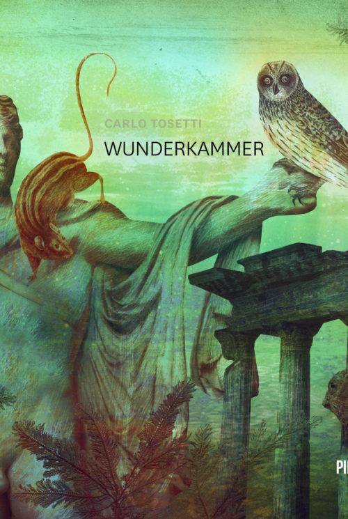 Wunderkammer. Audiolibro. Formato MP3